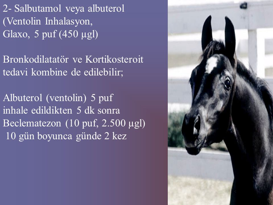 2- Salbutamol veya albuterol
