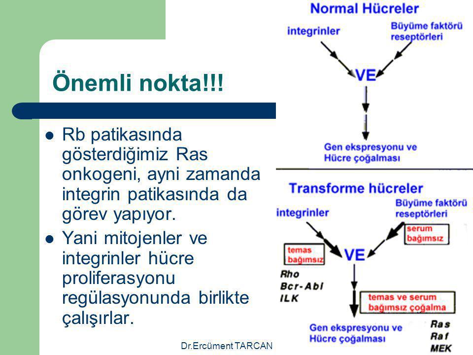 Önemli nokta!!! Rb patikasında gösterdiğimiz Ras onkogeni, ayni zamanda integrin patikasında da görev yapıyor.