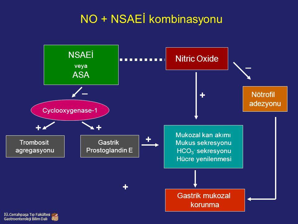NO + NSAEİ kombinasyonu