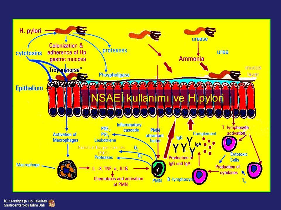 NSAEİ kullanımı ve H.pylori