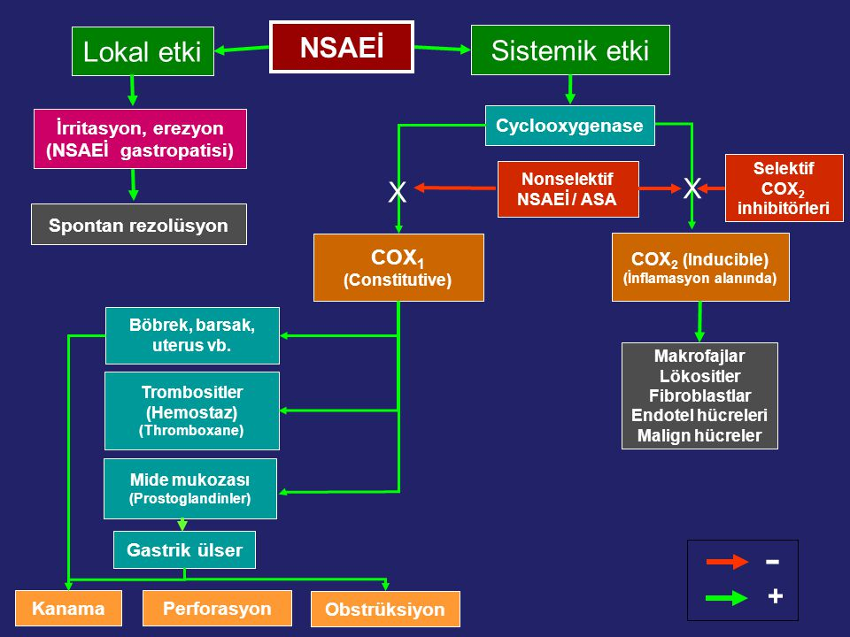 - NSAEİ Lokal etki Sistemik etki X X + COX1 (Constitutive)