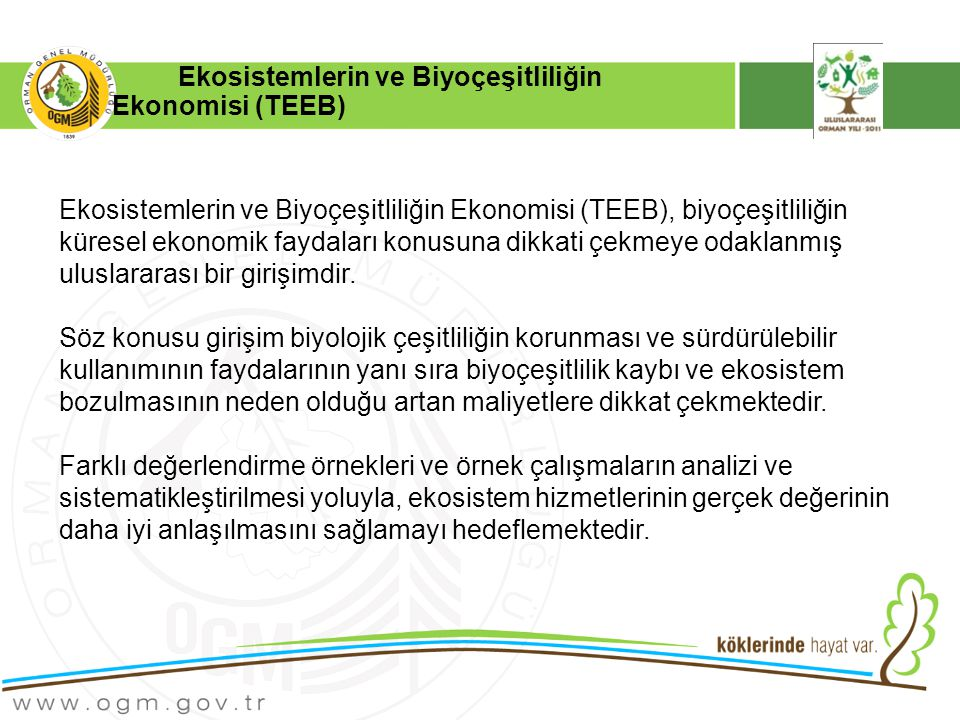 Ekosistemlerin ve Biyoçeşitliliğin Ekonomisi (TEEB)