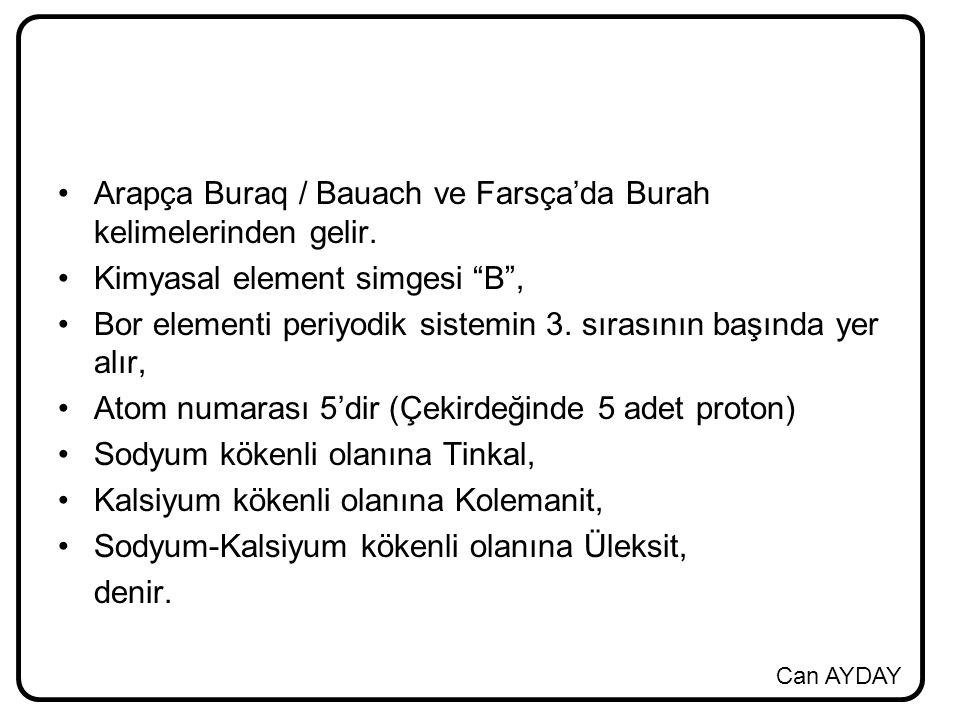 Arapça Buraq / Bauach ve Farsça'da Burah kelimelerinden gelir.