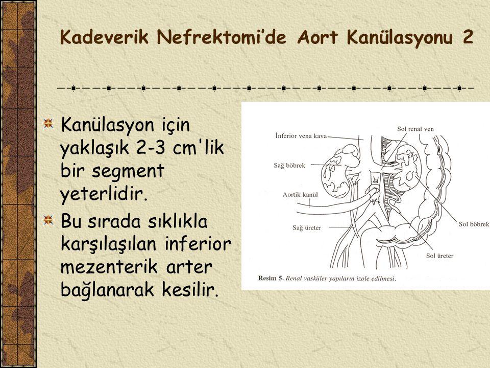 Kadeverik Nefrektomi'de Aort Kanülasyonu 2