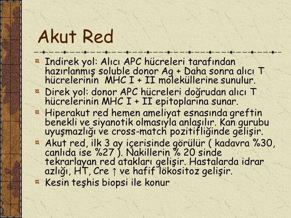 Akut Red