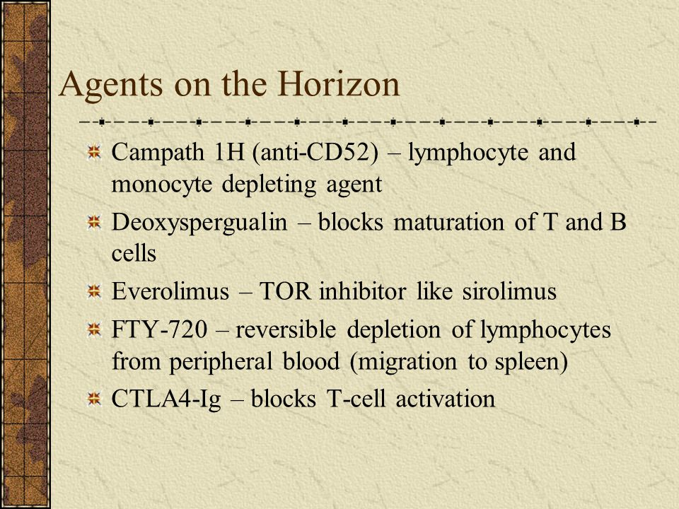 Agents on the Horizon Campath 1H (anti-CD52) – lymphocyte and monocyte depleting agent. Deoxyspergualin – blocks maturation of T and B cells.