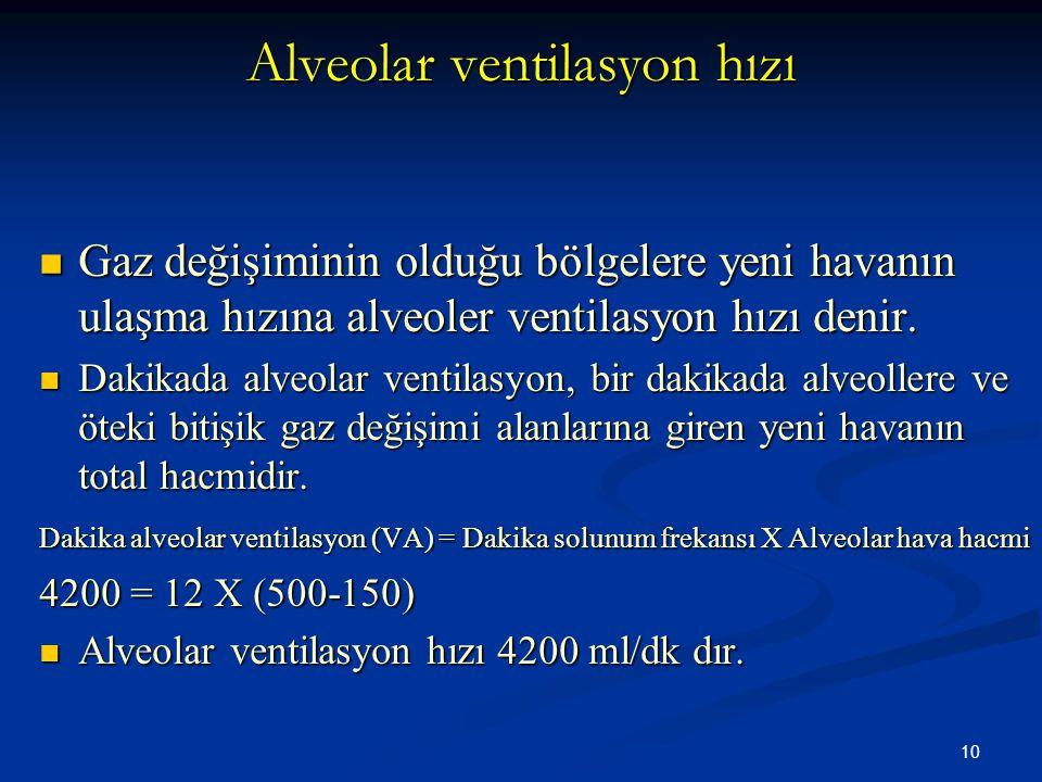 Alveolar ventilasyon hızı