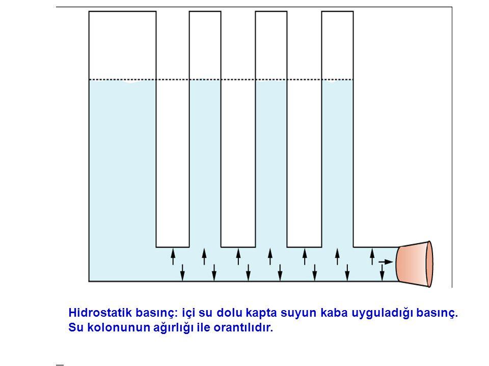 Hidrostatik basınç: içi su dolu kapta suyun kaba uyguladığı basınç.