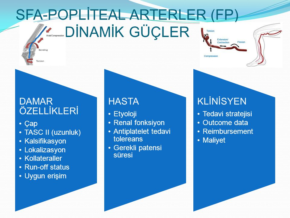 SFA-POPLİTEAL ARTERLER (FP) DİNAMİK GÜÇLER