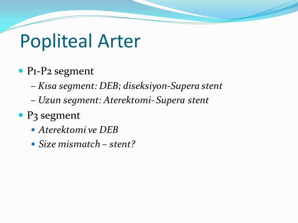 Popliteal Arter P1-P2 segment P3 segment