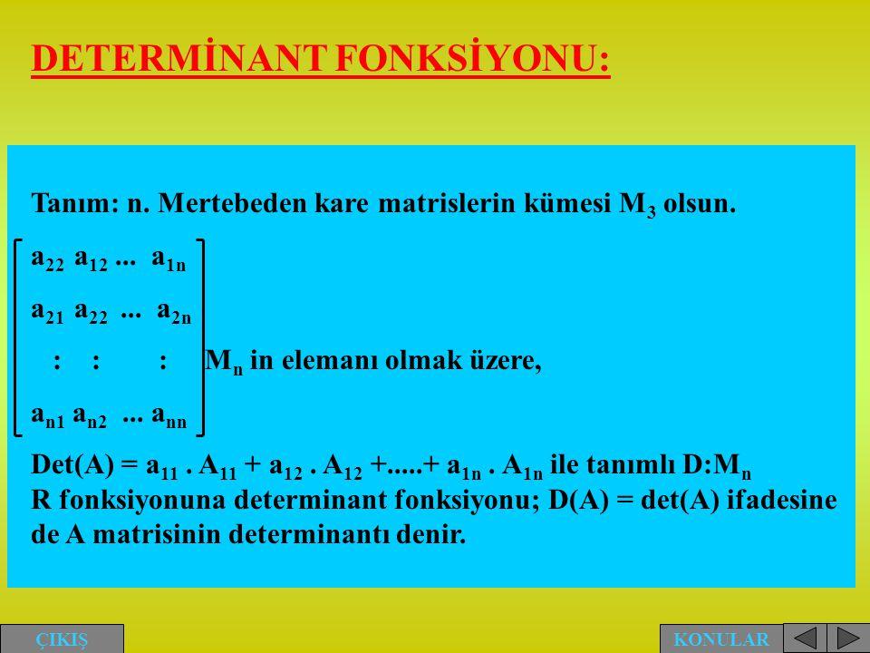 DETERMİNANT FONKSİYONU: