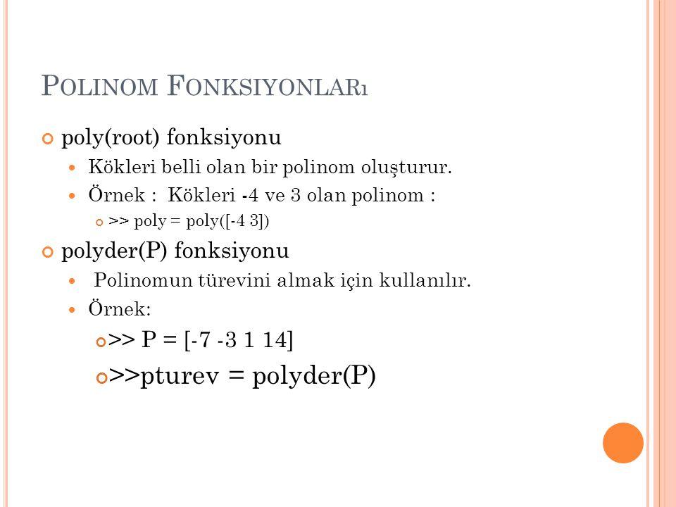 Polinom Fonksiyonları
