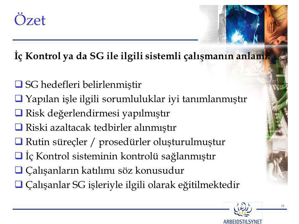 Özet İç Kontrol ya da SG ile ilgili sistemli çalışmanın anlamı: