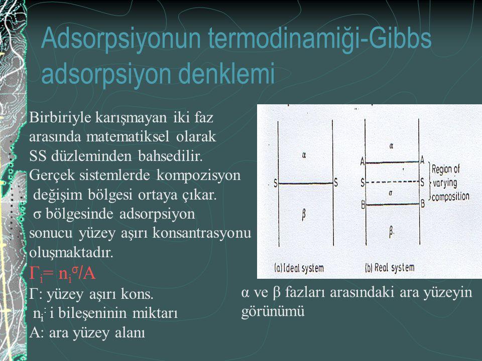 Adsorpsiyonun termodinamiği-Gibbs adsorpsiyon denklemi