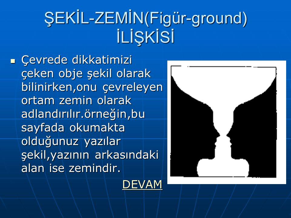 ŞEKİL-ZEMİN(Figür-ground) İLİŞKİSİ