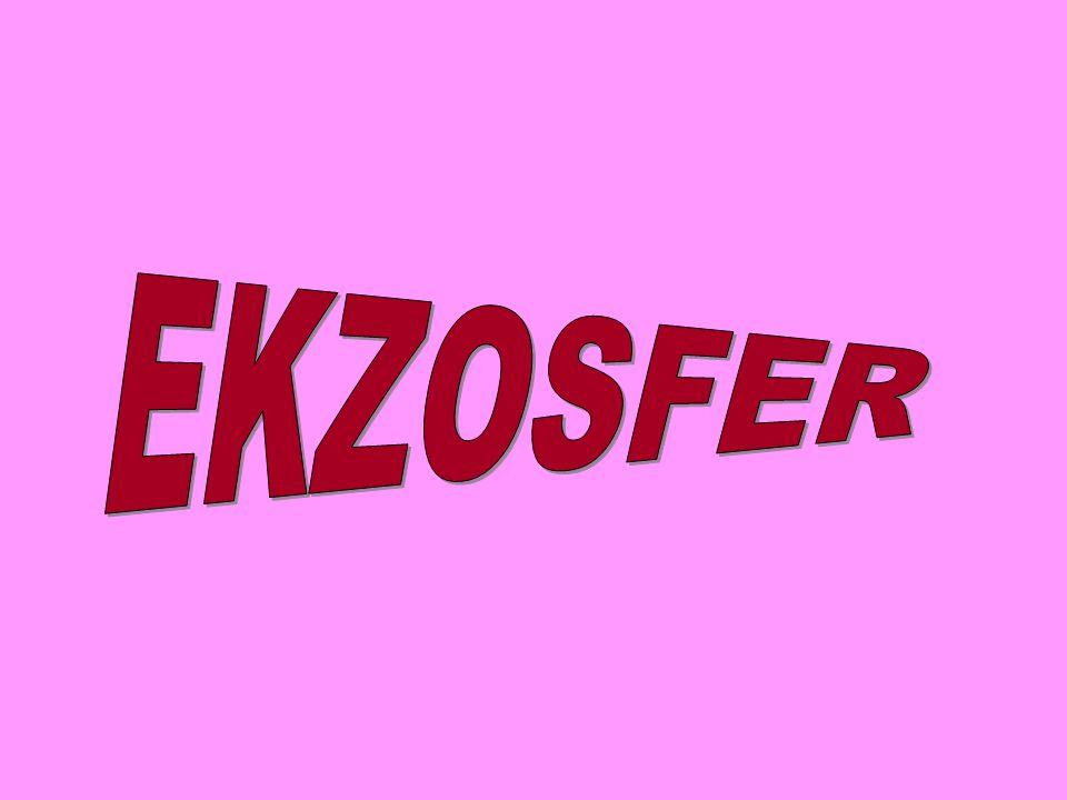 EKZOSFER