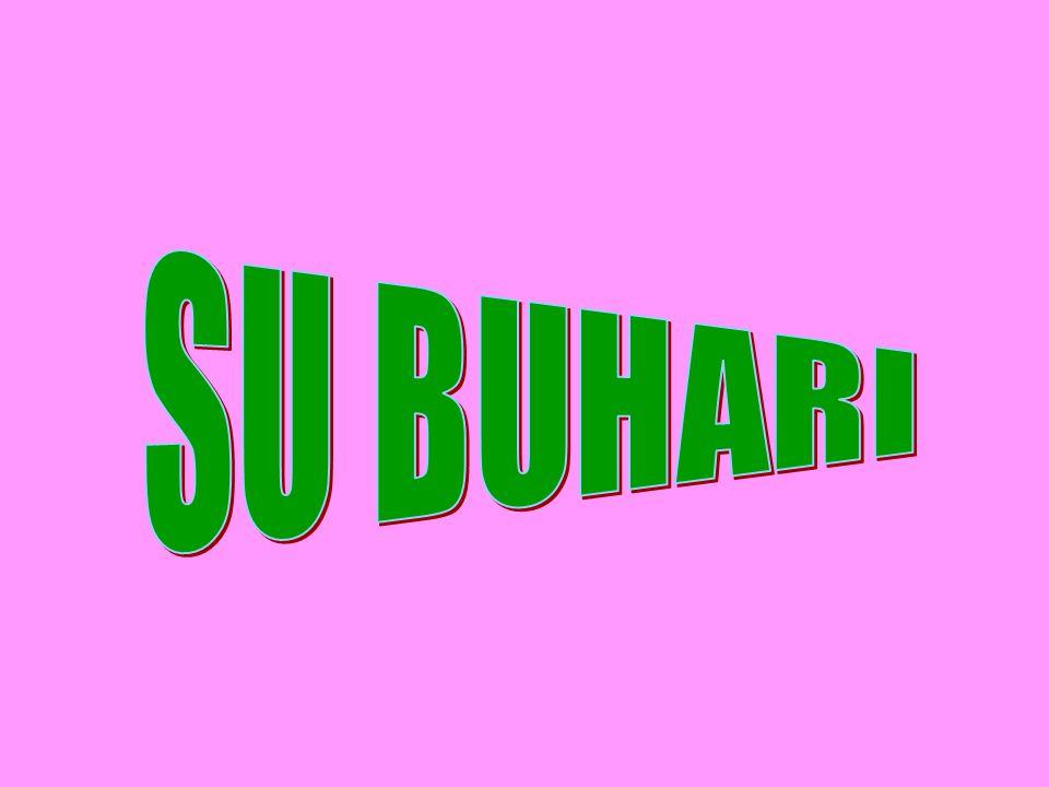 SU BUHARI