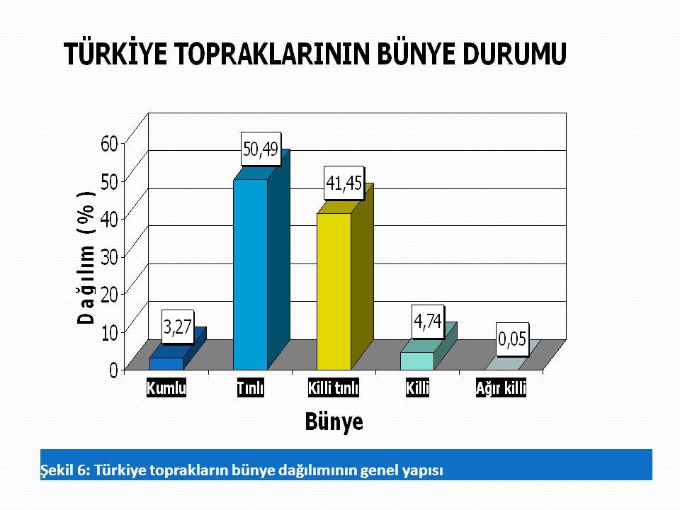 Şekil 6: Türkiye toprakların bünye dağılımının genel yapısı