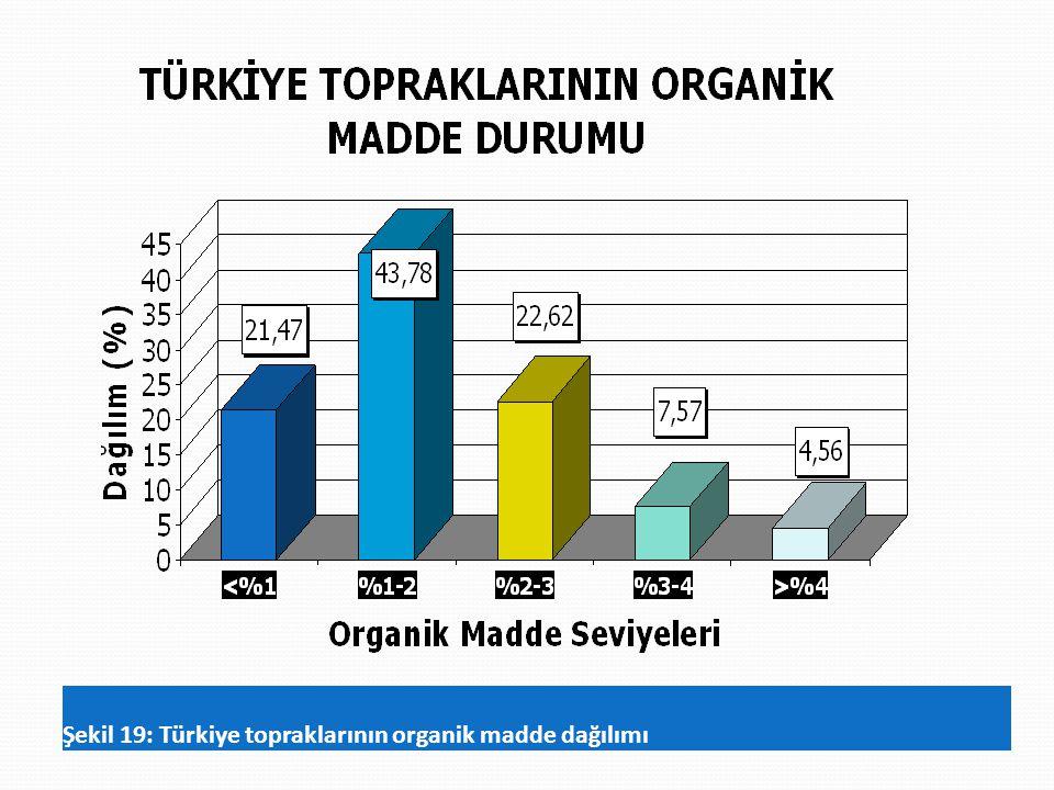 Şekil 19: Türkiye topraklarının organik madde dağılımı