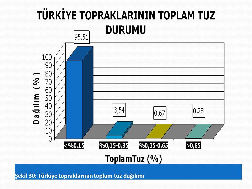 Şekil 30: Türkiye topraklarının toplam tuz dağılımı