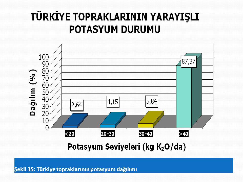 Şekil 35: Türkiye topraklarının potasyum dağılımı