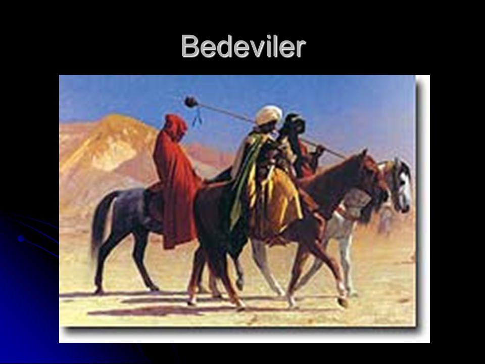 Bedeviler