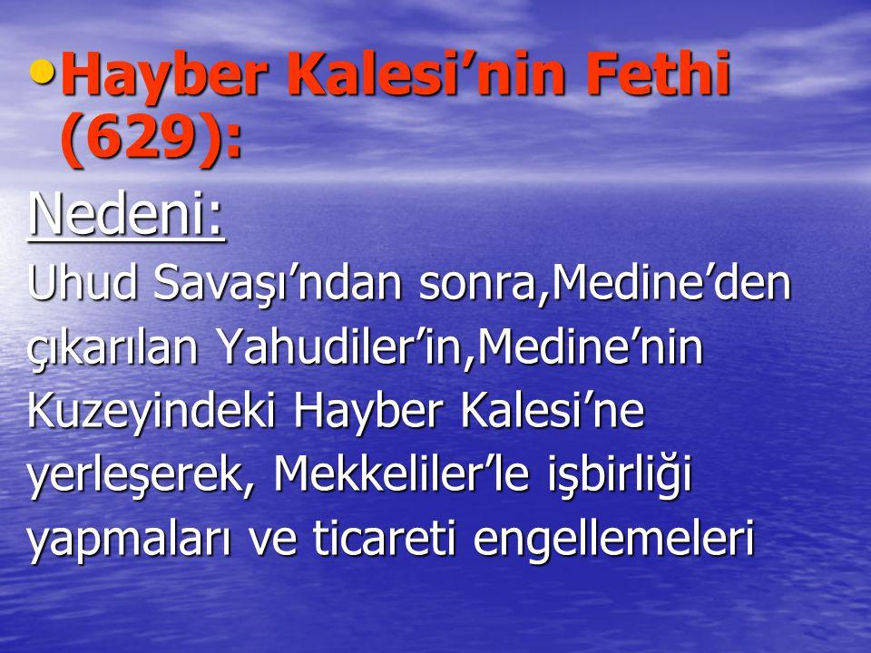 Hayber Kalesi'nin Fethi (629): Nedeni: