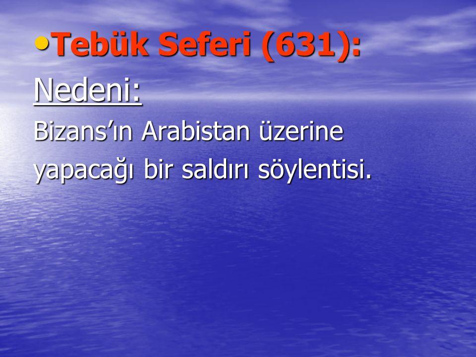 Tebük Seferi (631): Nedeni: Bizans'ın Arabistan üzerine
