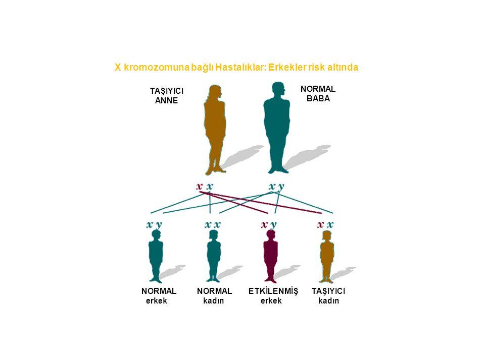 X kromozomuna bağlı Hastalıklar: Erkekler risk altında