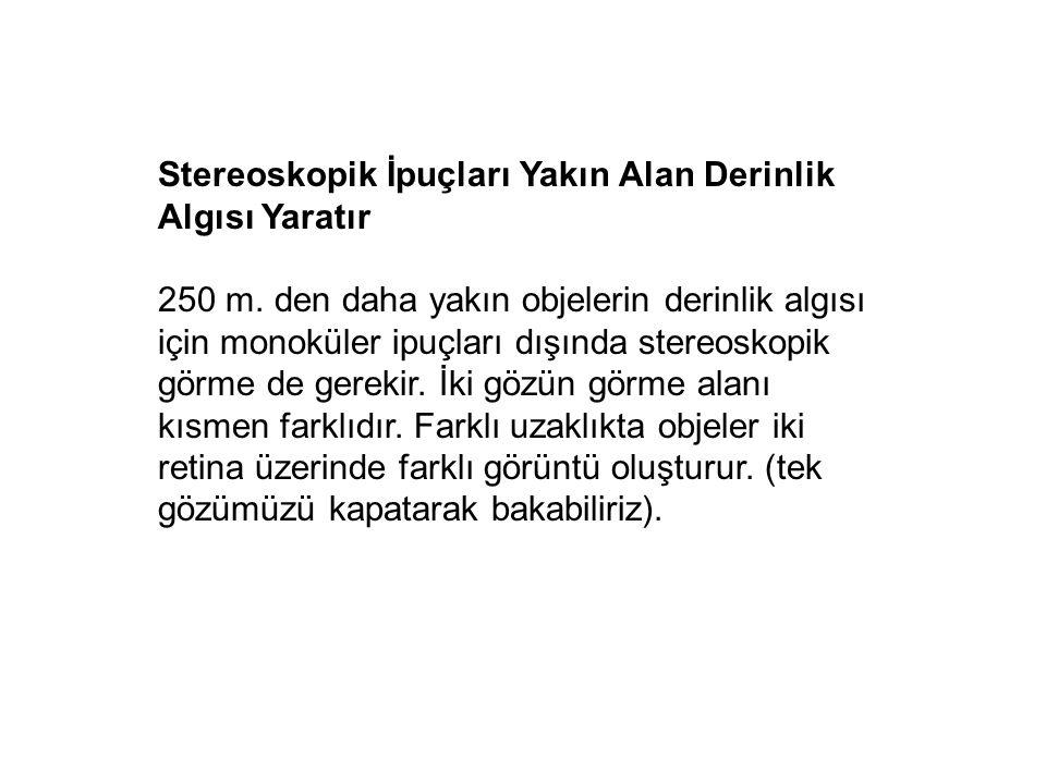 Stereoskopik İpuçları Yakın Alan Derinlik Algısı Yaratır
