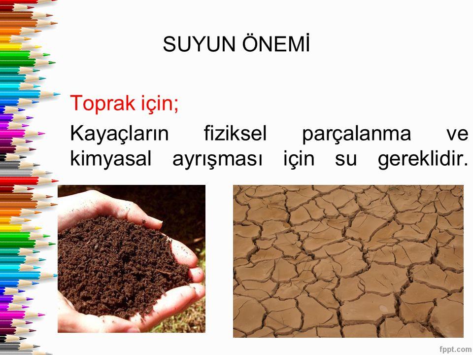 SUYUN ÖNEMİ Toprak için; Kayaçların fiziksel parçalanma ve kimyasal ayrışması için su gereklidir.
