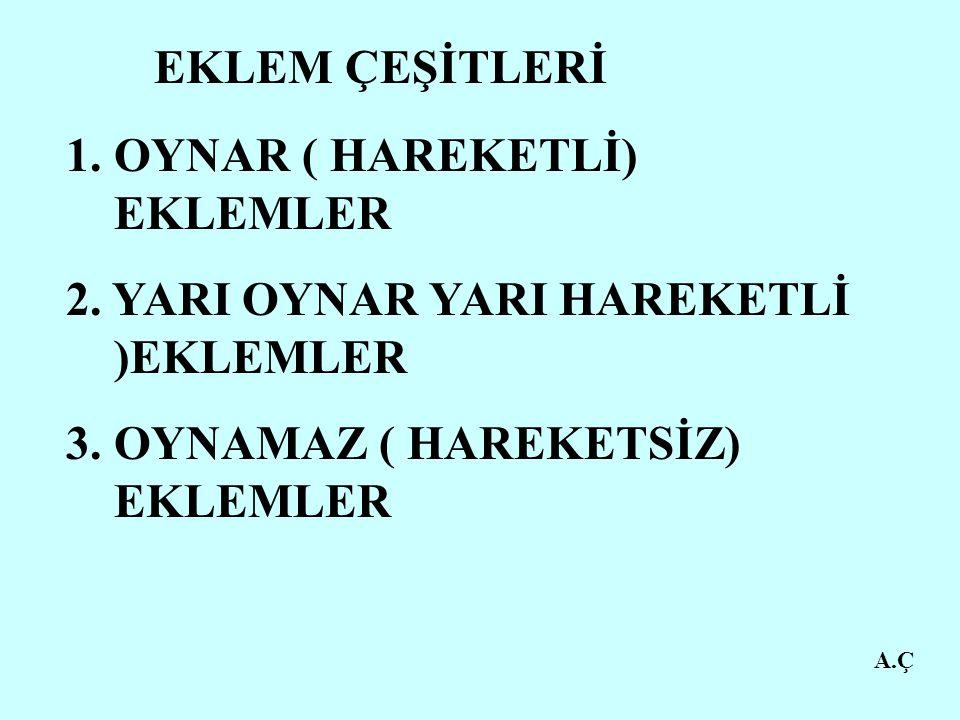 OYNAR ( HAREKETLİ) EKLEMLER 2. YARI OYNAR YARI HAREKETLİ )EKLEMLER