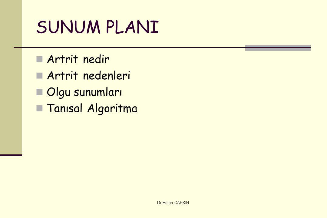 SUNUM PLANI Artrit nedir Artrit nedenleri Olgu sunumları