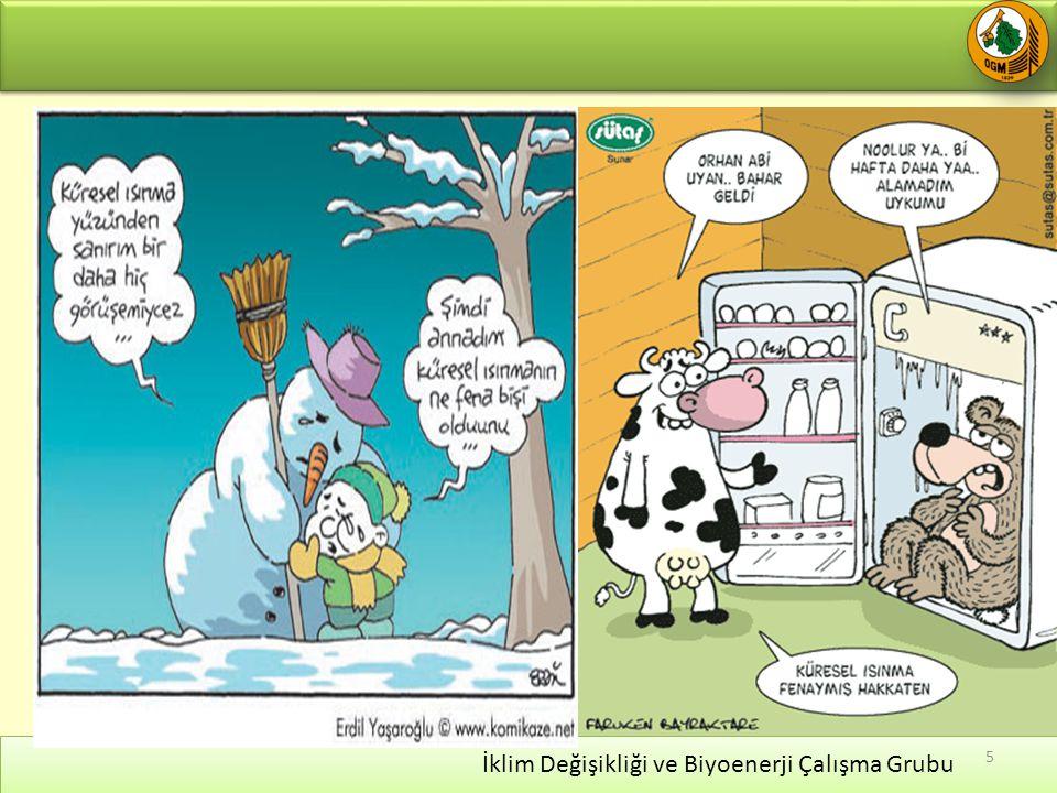 İklim Değişikliği ve Biyoenerji Çalışma Grubu