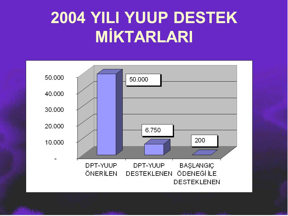 2004 YILI YUUP DESTEK MİKTARLARI