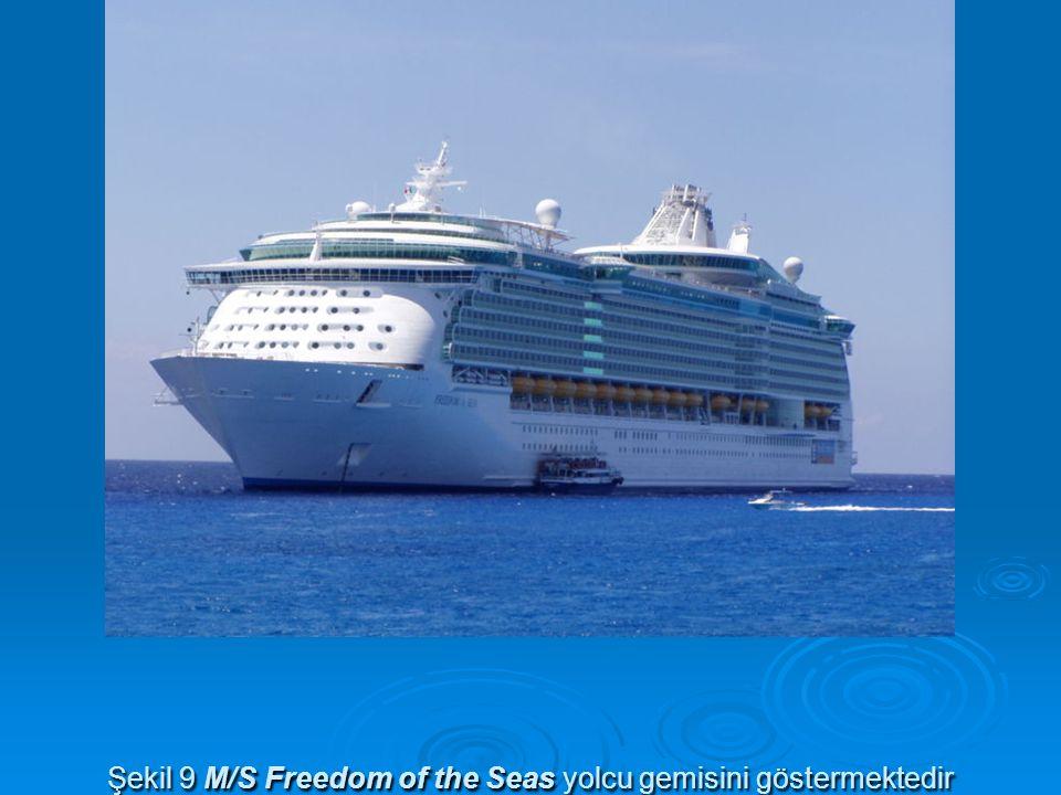 Şekil 9 M/S Freedom of the Seas yolcu gemisini göstermektedir
