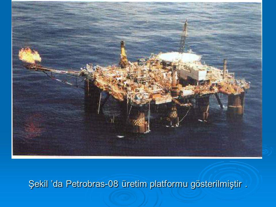 Şekil 'da Petrobras-08 üretim platformu gösterilmiştir .