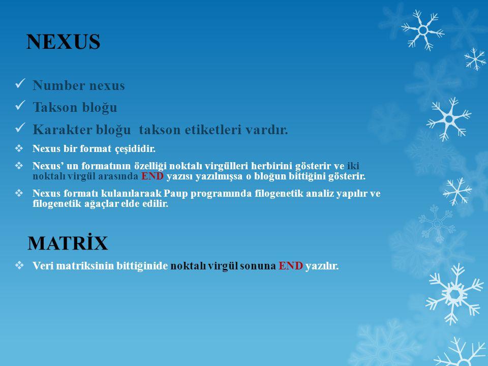 NEXUS MATRİX Number nexus Takson bloğu