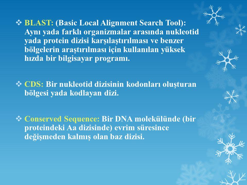 BLAST: (Basic Local Alignment Search Tool): Aynı yada farklı organizmalar arasında nukleotid yada protein dizisi karşılaştırılması ve benzer bölgelerin araştırılması için kullanılan yüksek hızda bir bilgisayar programı.