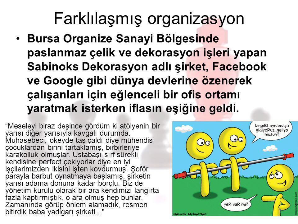 Farklılaşmış organizasyon