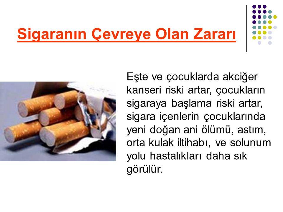 Sigaranın Çevreye Olan Zararı