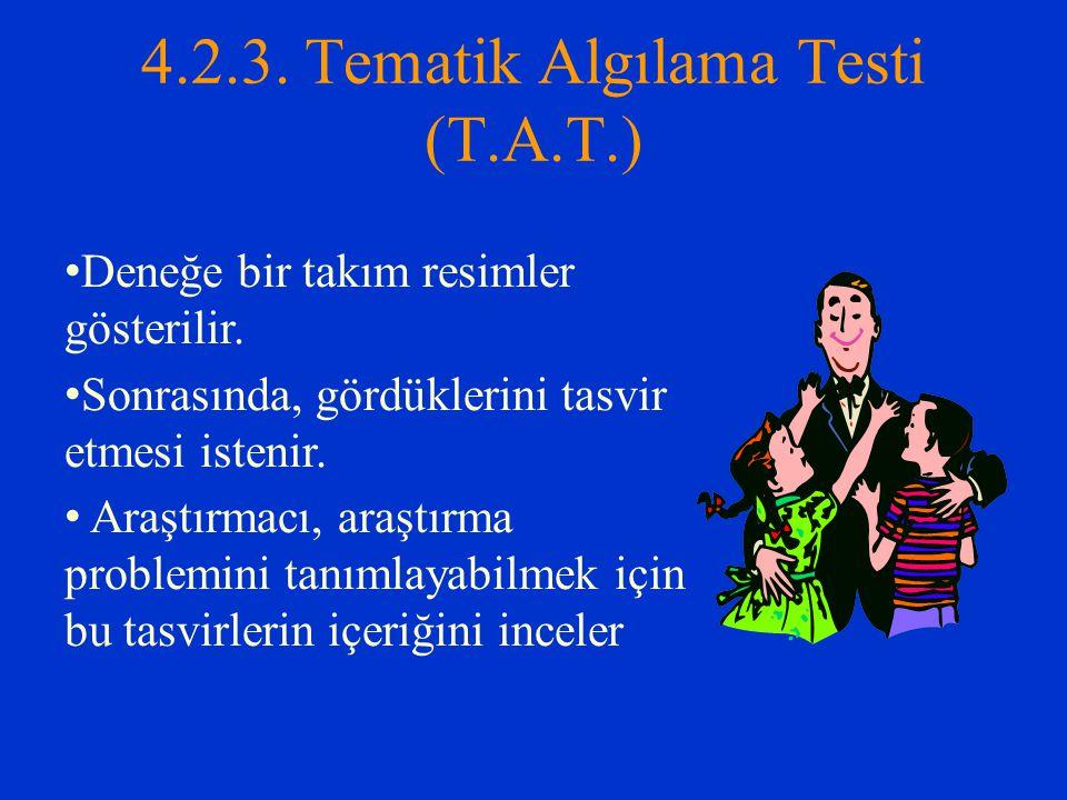 4.2.3. Tematik Algılama Testi (T.A.T.)