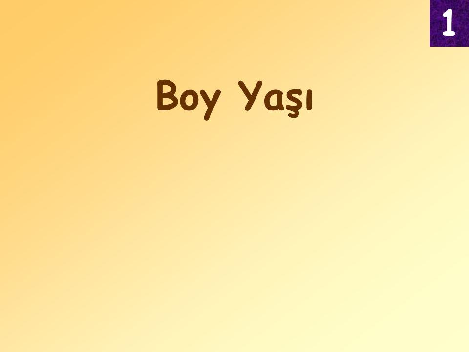 1 Boy Yaşı