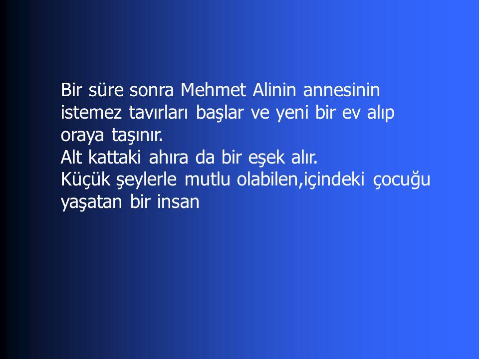 Bir süre sonra Mehmet Alinin annesinin