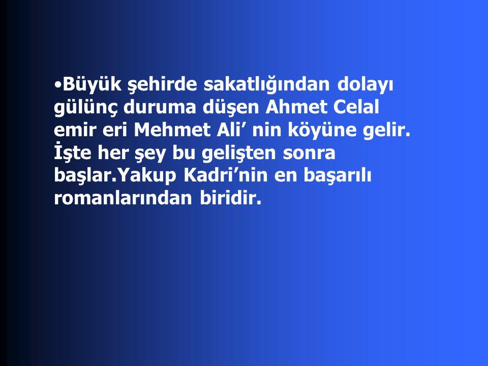 Büyük şehirde sakatlığından dolayı gülünç duruma düşen Ahmet Celal emir eri Mehmet Ali' nin köyüne gelir.