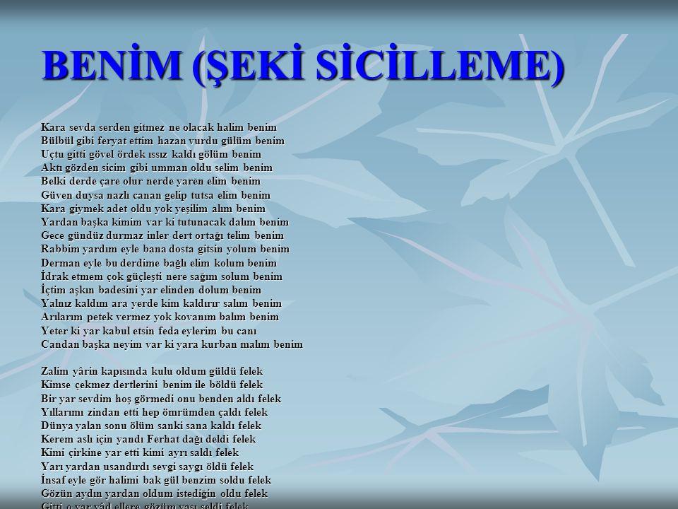 BENİM (ŞEKİ SİCİLLEME)