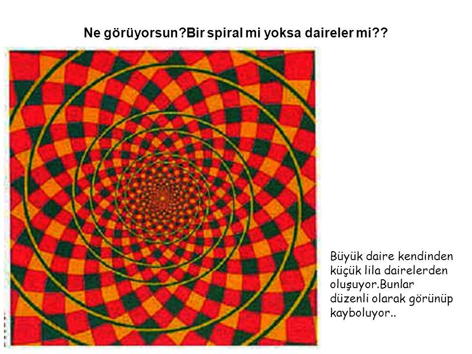Ne görüyorsun Bir spiral mi yoksa daireler mi