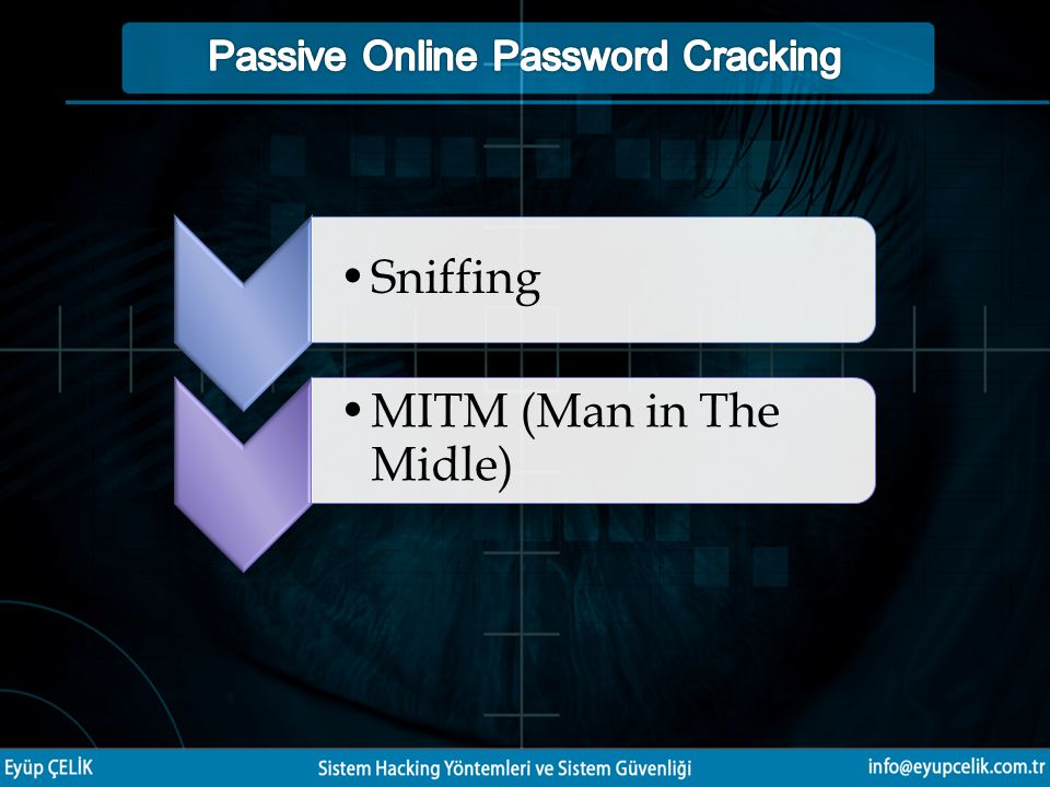 Passive Online Password Cracking