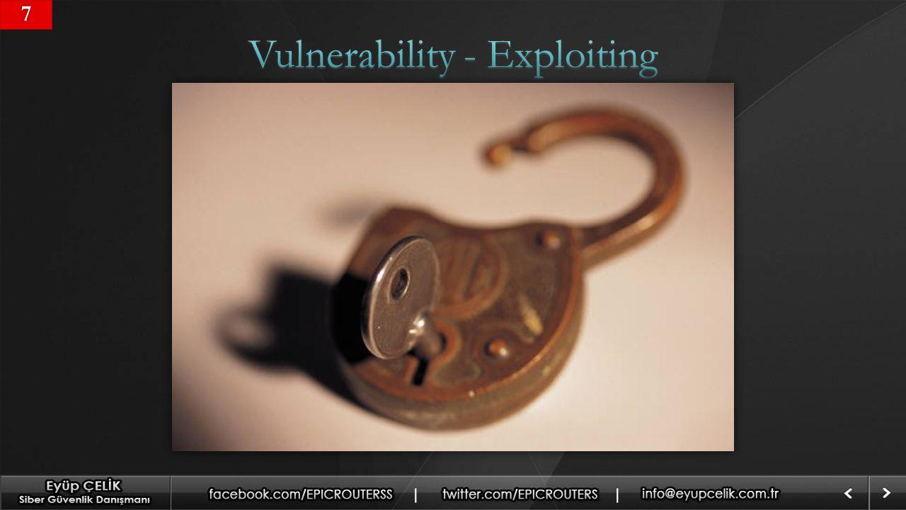 Vulnerability - Exploiting