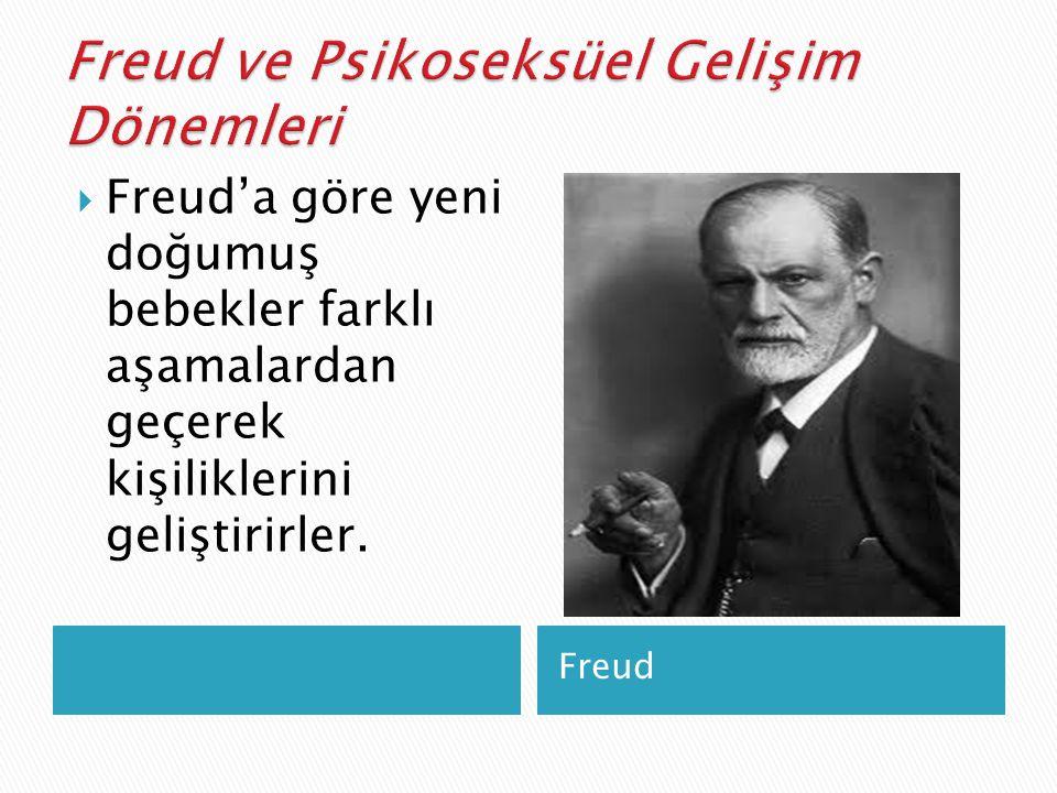 Freud ve Psikoseksüel Gelişim Dönemleri